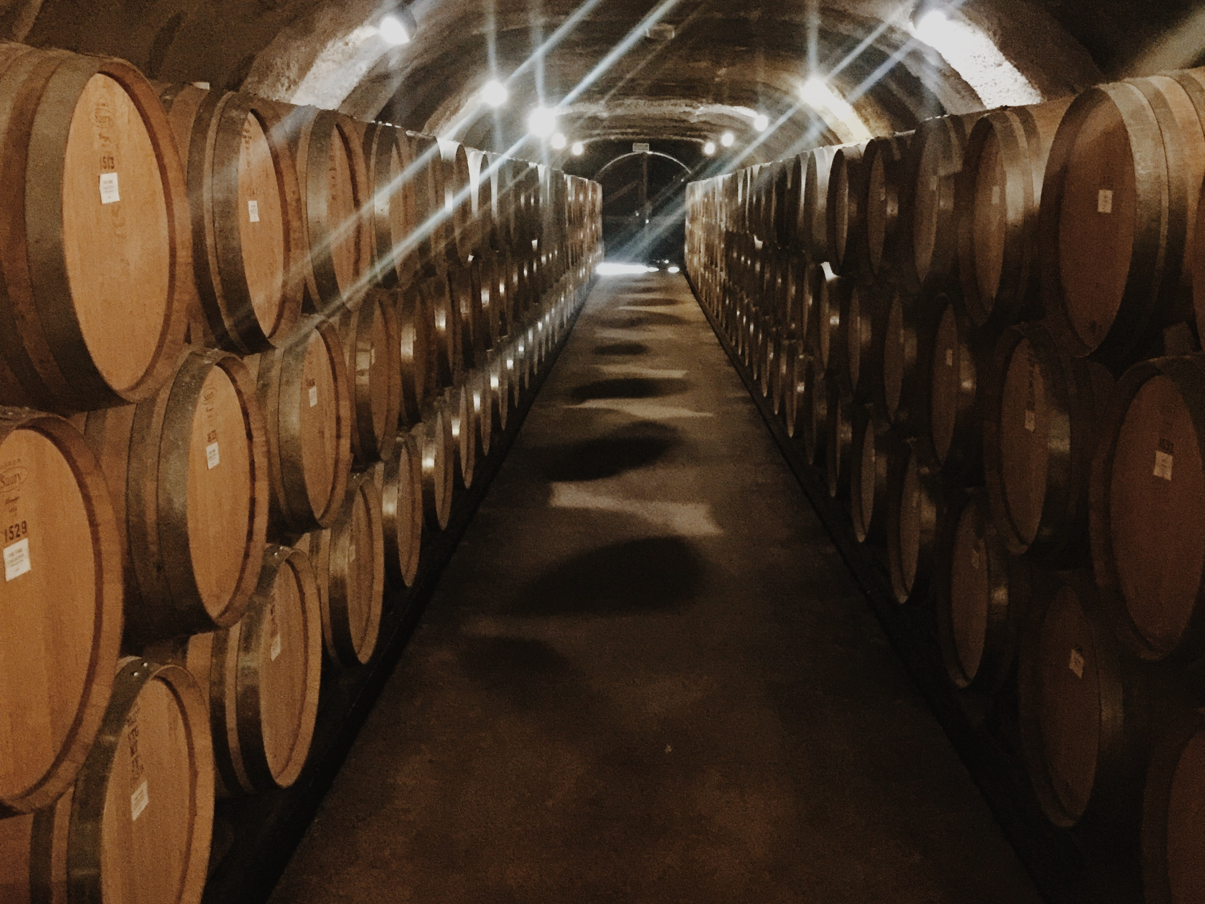 New Zealand's largest wine cave